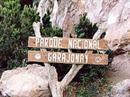 Der Garajonay Nationalpark auf La Gomera ist bedroht.