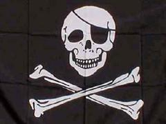 Unter Piratenflagge - die P2P-Freunde wollen ins Parlament.