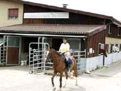 Pferdesportzentrum Binningen.