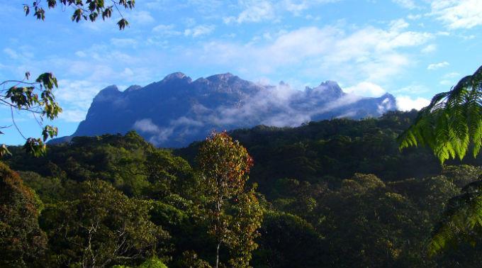Die Leichen wurden vom höchsten Berg des Landes, dem Mount Kinabalu auf Borneo, in ein Basislager gebracht.